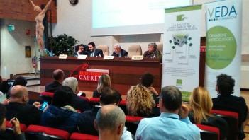 Brescia_22-10-15_142250_350x200