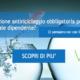 formazione antiriciclaggio dipendenti e collaboratori